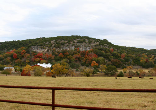 fall autumn texas hill country