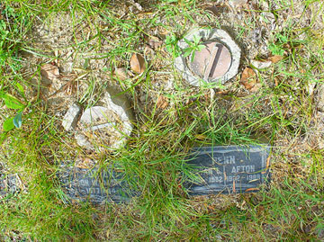 gravestones grass overgrown